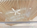 gjnfzssvzn_metal-strip-suspended-ceilings-228499